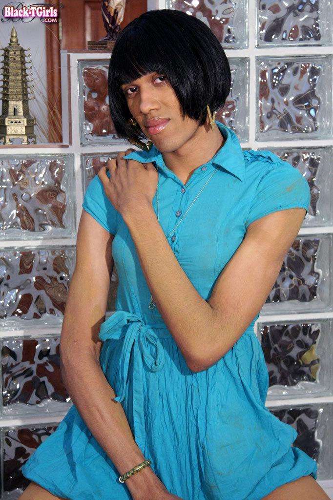Black TGirl With A Long Black Shedick!