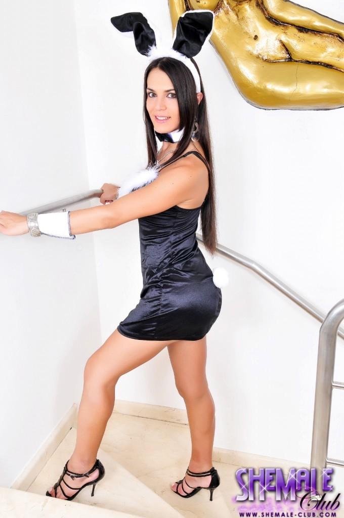 Brazilian Shemale Mickely Posing As Playboy Bunny