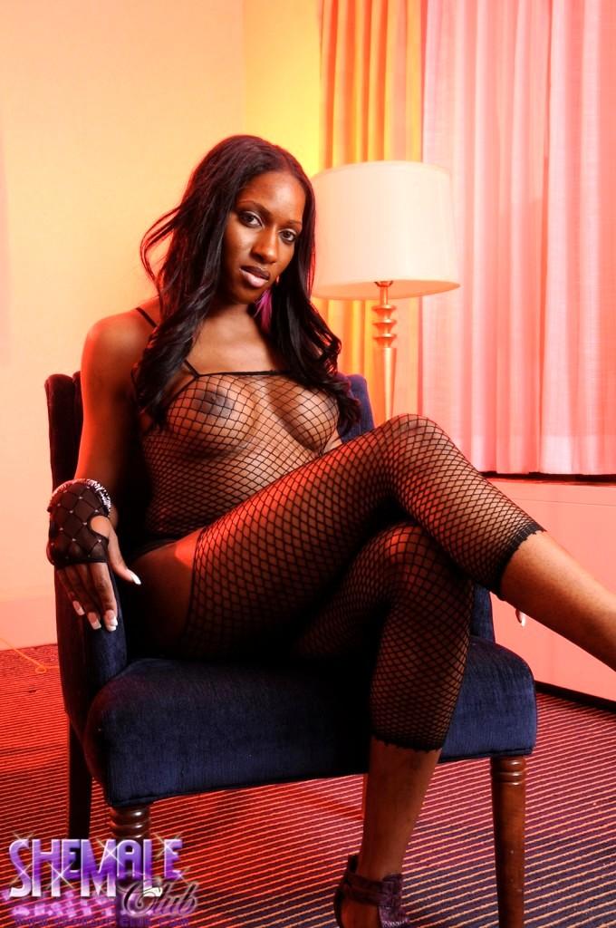 Chocolate Transexual Posing In Flirtatious Fishnet