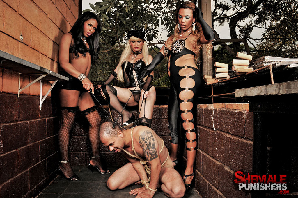 Submissive Male Gangbanged By Tgirls